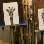 Ados : girafes au fusain